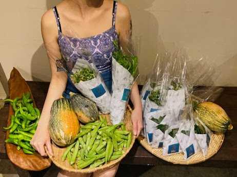 「聚落山海」將農場野菜直送,內含10包野菜、一組1200元。(圖/聚落山海)