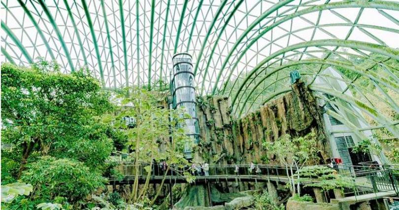 到台北市立動物園參觀新建成的穿山甲館。(圖/KLOOK提供)