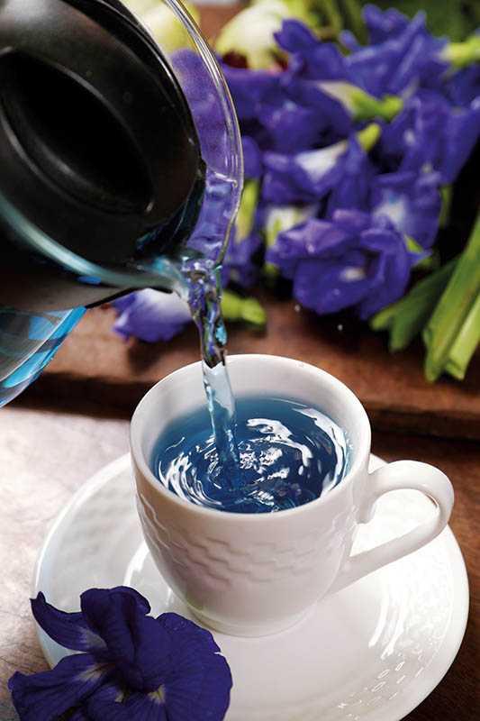 14F手作甜點家庭農場有現場採摘的蝶豆花,可供泡茶飲用。(圖/于魯光攝)