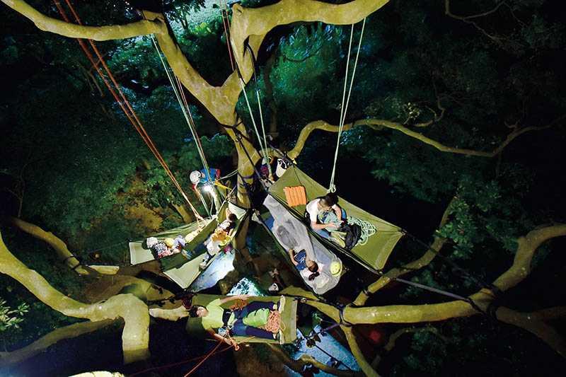 登上樹冠層後,可使用專用的吊床在高空過夜。(圖/攀樹趣提供)