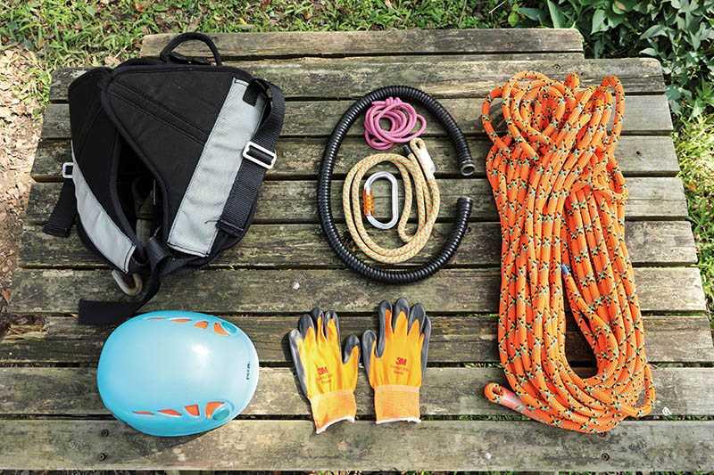 以投擲袋、繩結、繩索及護具裝備確保安全,才能盡情體驗攀樹樂趣。(圖/于魯光攝)