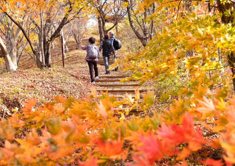 健康健行計畫 - 石倉山