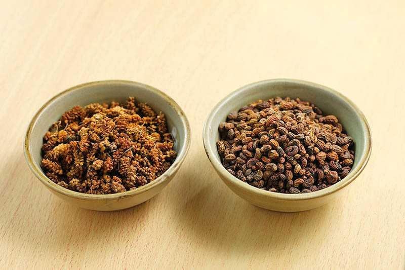「女湯」適量加味桑葚子、女貞子,滋陰暖身,特別有益女性調養體能、促進循環。(圖/于魯光)