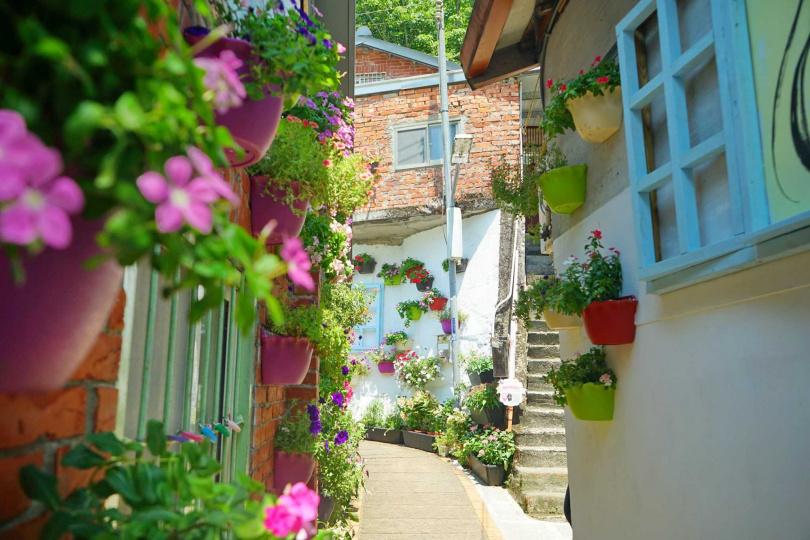 情人巷上段、桂花巷階梯等地將布置主題花卉。