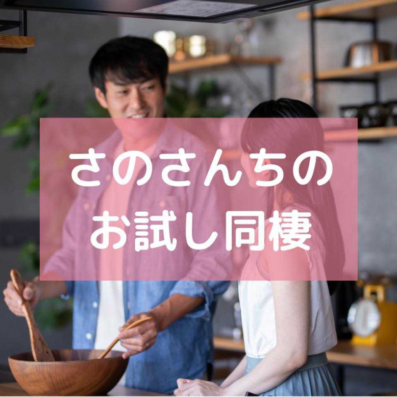(圖/翻攝自sanosanchi.reivalue.co.jp,下同))