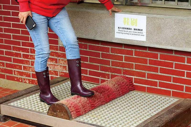 進入「鹿角坑」前,在管制站要刷清鞋底,避免把外來的花草種子帶入保護區。(圖/于魯光攝)