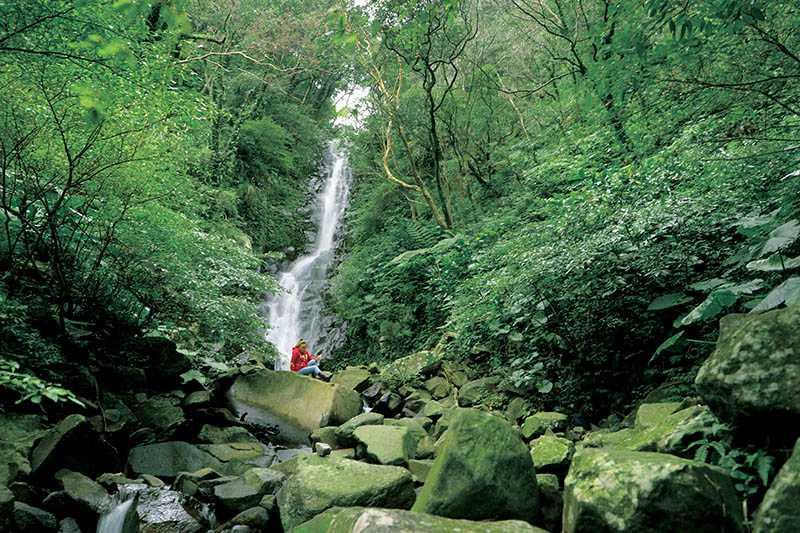 登「鹿角坑」山林古道時,溯溪找路的挑戰性頗高,讓人很難相信身在台北市。(圖/于魯光攝)
