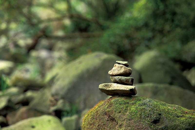 園內禁止在樹上綁布條,需沿路尋找小石堆,辨識正確的路線。(圖/于魯光攝)