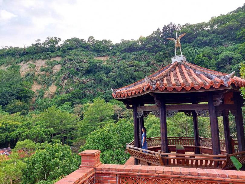 在「南亭」遠眺山景,滿眼都是綠意。