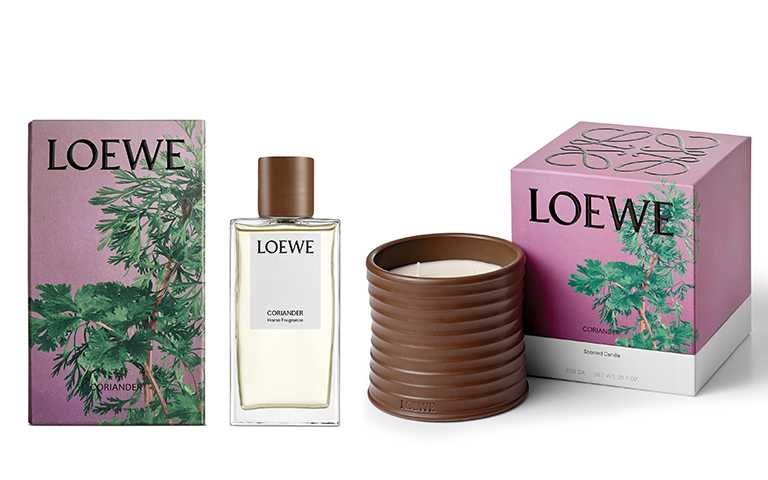 LOEWE家居香氛系列訂於9月3日於全球指定LOEWE專門店、perfumesloewe.com及loewe.com發售。(圖/提供)
