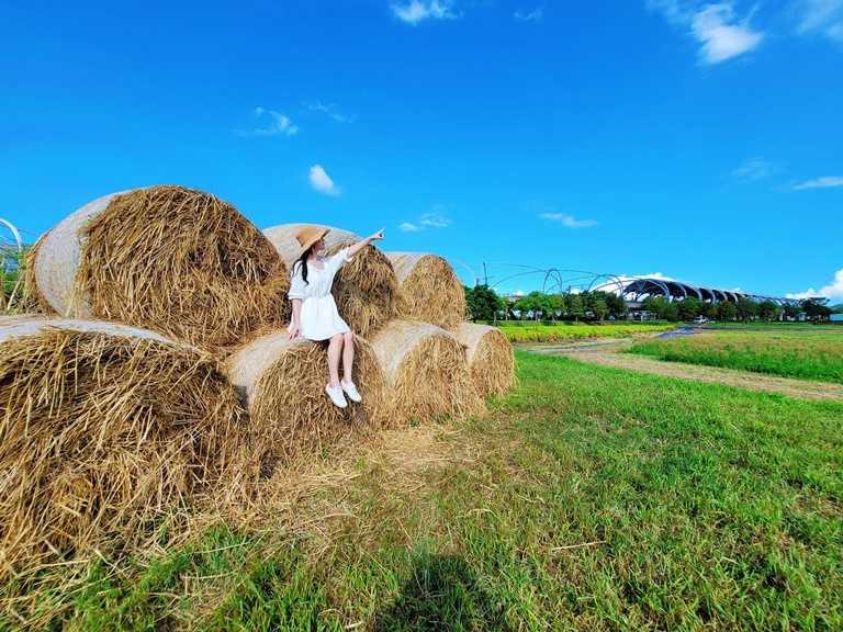 波草旁擺放了「稻草捲心酥」供民眾拍照。(圖片提供:宜蘭ㄚ欣的美食日誌)