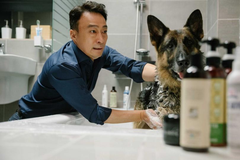 軍犬阿里由擁有「演技之神」之稱的申河均配音。