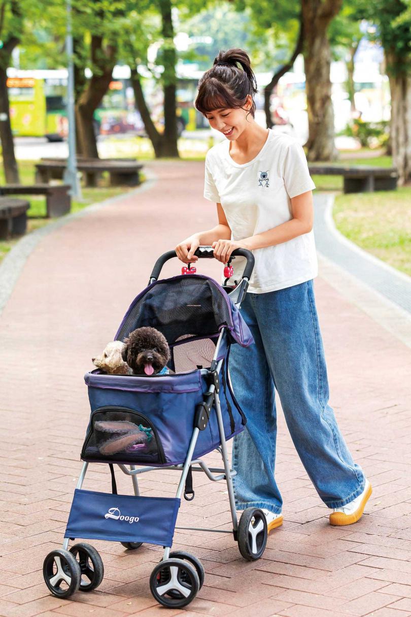 寵狗的何紫妍,有空就會推著娃娃車帶毛孩出門逛逛。(圖/林士傑攝)