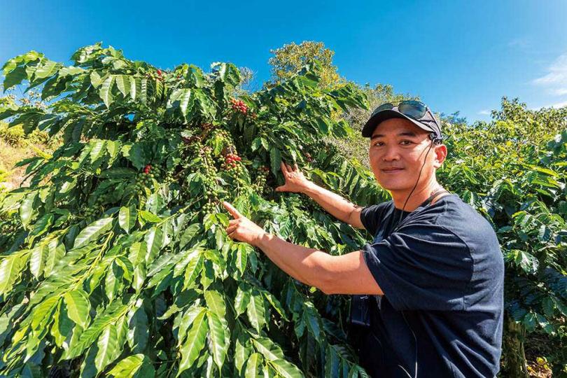 「92向陽高山咖啡」的負責人林言謙抓住轉型契機,成為國姓鄉咖啡農們的領頭羊。 (圖/焦正德攝)