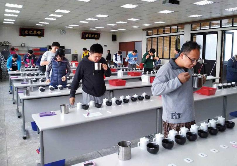 台北市文山區是台灣包種茶的最大產區,每年會針對春、冬茶進行評鑑。(圖/翻攝畫面)