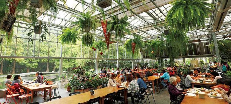 森林系玻璃溫室用餐區,自然光線恣意灑落,十分舒服。(圖/于魯光攝)