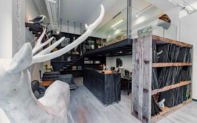 「奇珍異物大廳」呼應博物館的前身概念,以大廳後方的常設珍奇櫃,巧妙連結畫廊空間的演進脈絡。