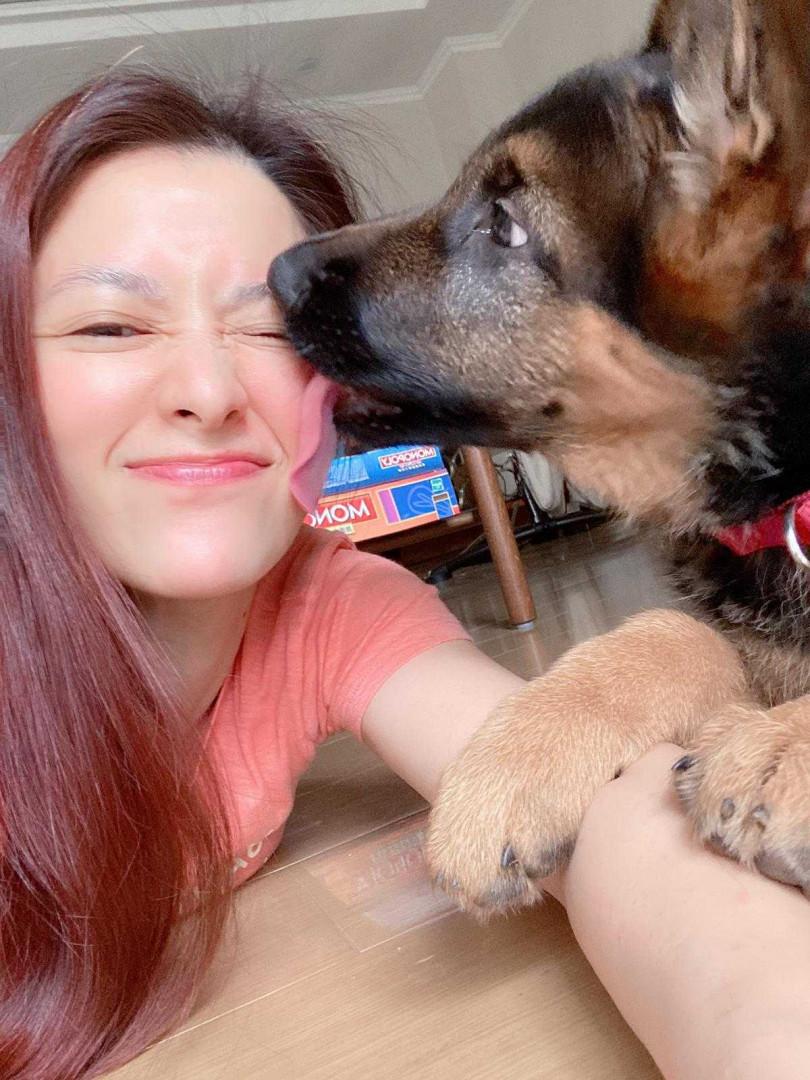 李蒨蓉對愛犬呵護備至,天天帶Wolfy出門放風。(圖/艾迪昇傳播提供)