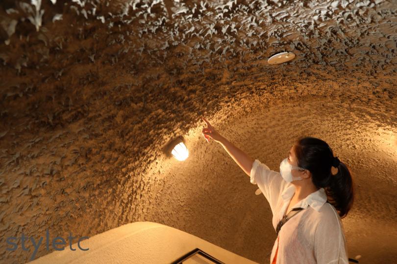 密道除了使用鋼筋水泥,刻意設計的凹凸不平牆面,可加強吸音效果。(圖/于魯光攝)