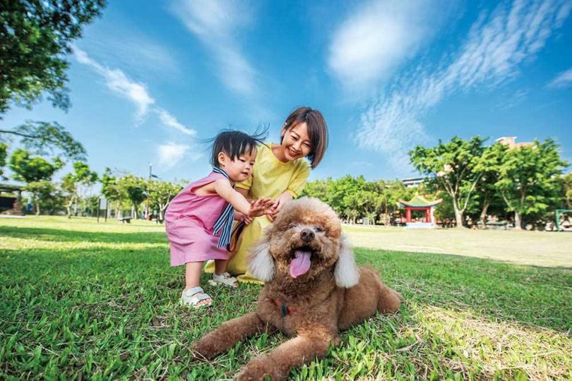廖婕妤首次同時帶狗兒子「東東」和女兒「璇璇」一起出門,兄妹檔活潑過頭,令她非常緊張。(圖/張祐銘攝)