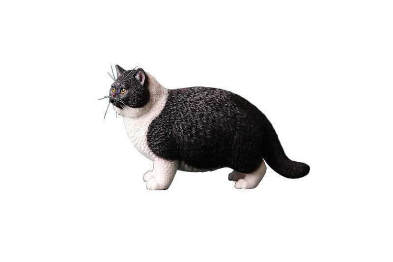 肥貓C(黑白)