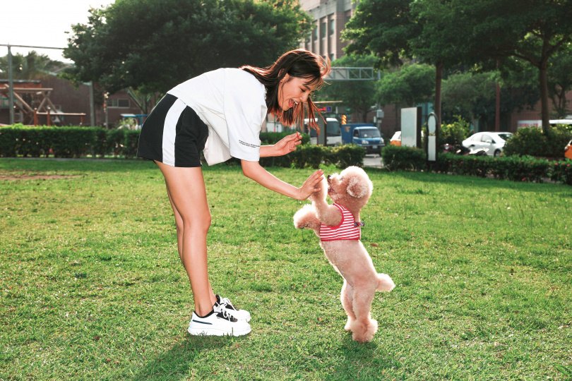 拍攝時,Dora讓豆豆站起來表演「擊掌」,模樣相當可愛。(圖/彭子桓攝)
