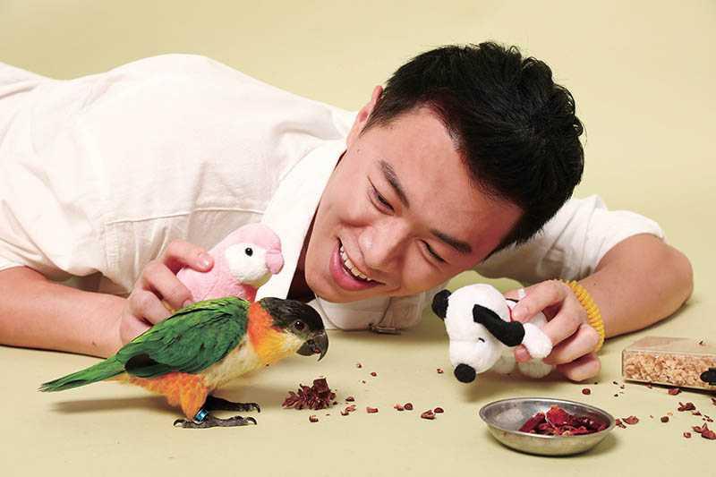 寵愛鳥寶貝的游書庭,為奇奇買了許多玩具跟零食,而粉紅色鸚鵡玩偶更成了奇奇的「女朋友」。(圖/彭子桓攝)