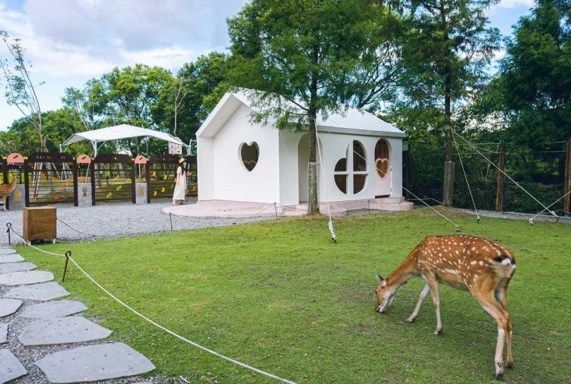 斑比山丘全新落成的「愛情小屋」,擁有全白夢幻外觀和可愛心形窗框,吸引民眾搶拍美照。(圖/品牌提供)