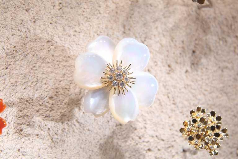 梵克雅寶《Light of Flowers》東京期間限定展覽,Rose de Noel胸針,黃K金、白色珍珠母貝、鑽石。(圖╱Van Cleef & Arpels提供)