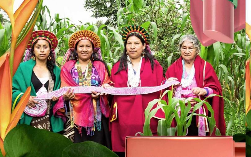 香緹卡與亞馬遜保護組織ACT與地方政府共同合作,支持由當地五個部落的原住民年長女性與醫療者共同組成的團體ASOMI,購買75英畝生物鳥類棲息地成立合法指定保護區,幫助她們重新建立家園。(圖/品牌提供)