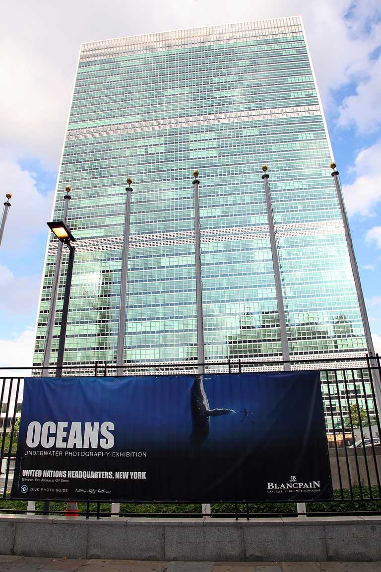 由BLANCPAIN贊助舉辦的「世界海洋日」攝影展,現正於紐約聯合國總部開展,提供海底攝影師一個對外溝通的優質平台。(圖╱BLANCPAIN提供)