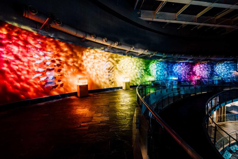 遊客可循著「色水廊道」的層層色階尋找自己喜歡的顏色。