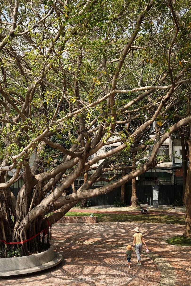 擁有近30年歷史的長和公園,就位在長和宮後方,改建後仍保留著百年老樹。(圖/于魯光攝)