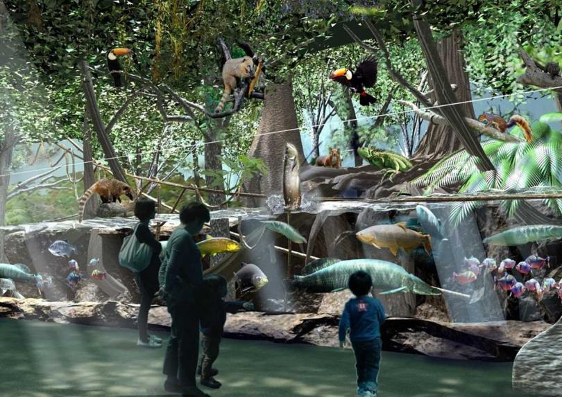 「雨林探險」展區將熱帶雨林忠實呈現,打造樹上、陸地及水中棲息的生態環境。(圖/翻攝自Xpark官網)