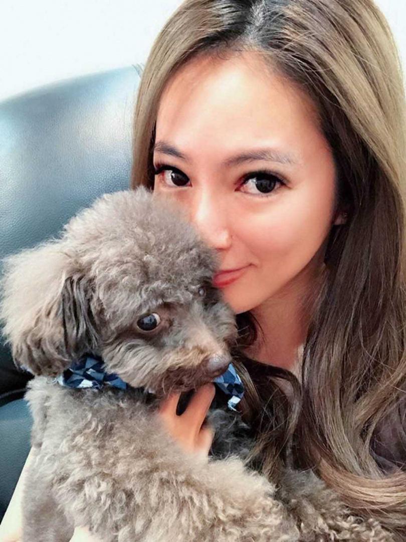 高宇蓁的狗兒子Captain是Choco的親生爸爸。(圖/翻攝自網路)