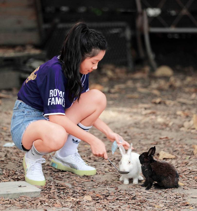 「TO House兔子庭園餐廳」的院子綠意盎然,適合全家一起造訪。看著兔子們在腳邊蹦蹦跳跳,非常療癒。(圖/于魯光攝)