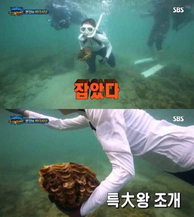 李烈音捕食「硨磲貝」,最重可處5年徒刑。(圖/翻攝自SBS)
