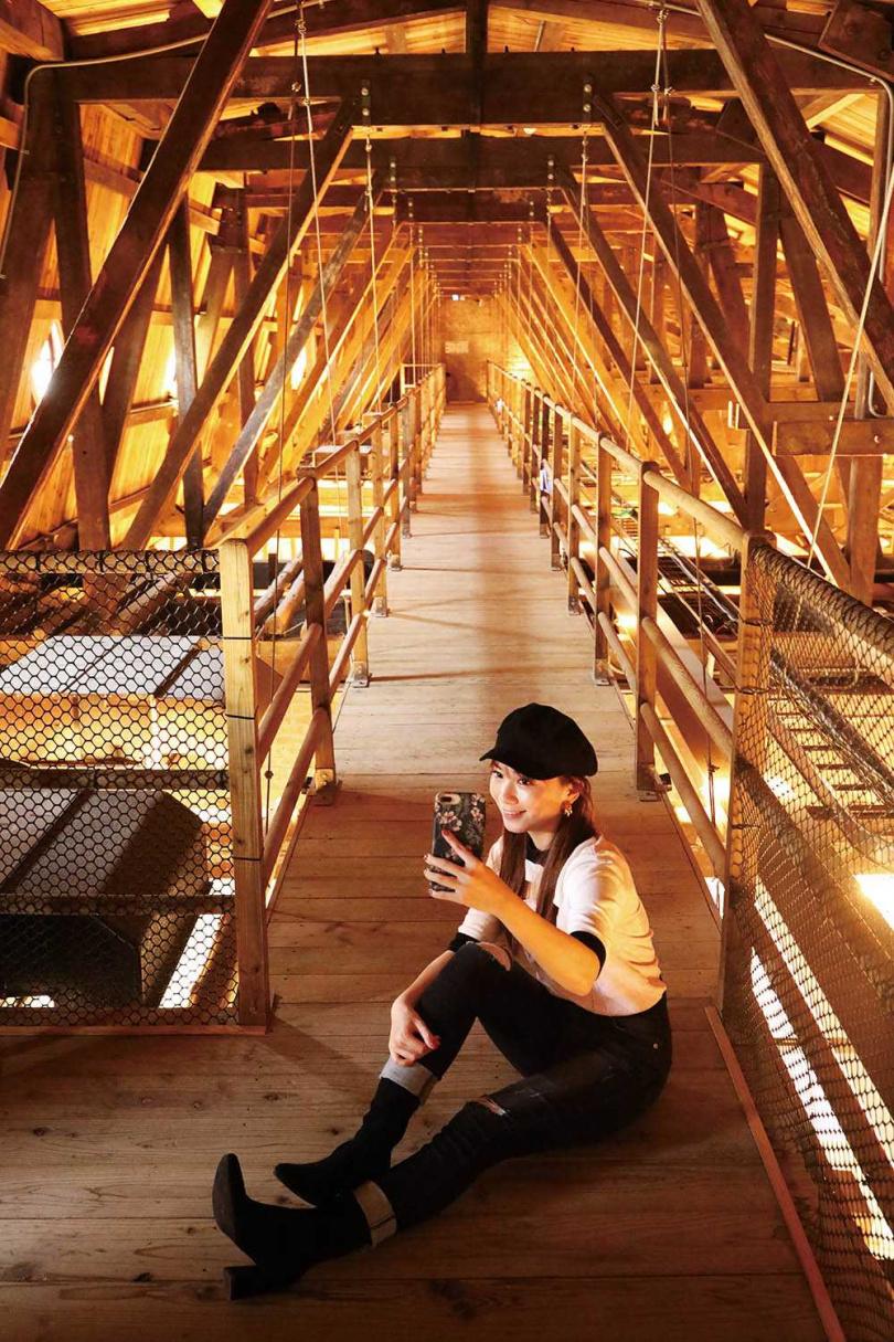 設置在屋頂上的貓道,功能為方便工作人員進行施工、維修而搭建的便道。(圖/于魯光攝)