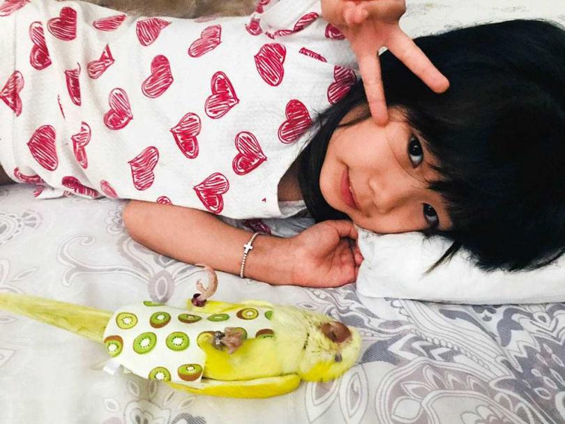 女兒和一起長大的皮卡丘培養出好感情,也建立照顧寵物的責任感。(圖/葉家妤提供)