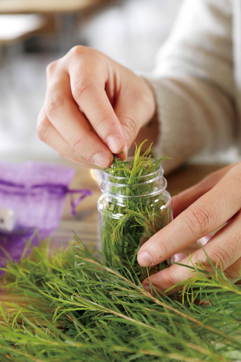 在「遠足生態農場」,可利用自行採摘的茶樹葉,製作成精油乾洗手。(攝影/于魯光)