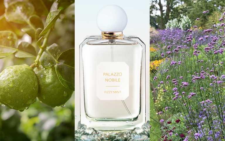 VALMONT宮殿系列FIZZY MINT沁檸義香淡香水100ml/5,200元會讓人聯想到義大利芳草園的柑橘香調。(圖/品牌提供、翻攝網路)