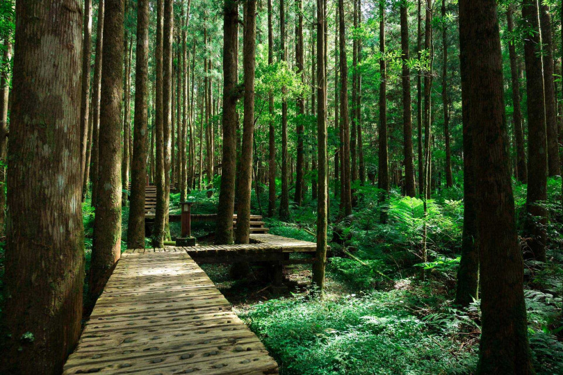 從山莊旁的步道往下走,還能欣賞最有名的明池湖畔之景。(圖/Klook)