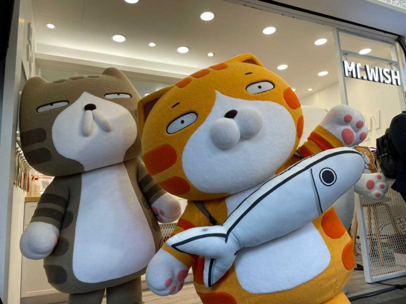 聯名記者會當天白爛貓現身台北。