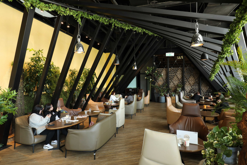 「兜咖啡」的空間布置許多綠色盆景、熱帶植物,宛如室內森林。