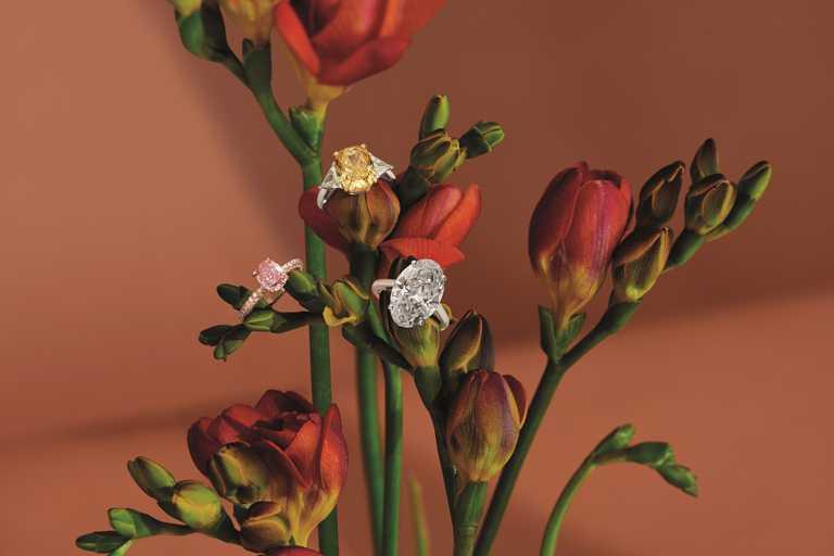 DE BEERS高級珠寶系列,頂級單鑽戒指。(圖╱DE BEERS提供)