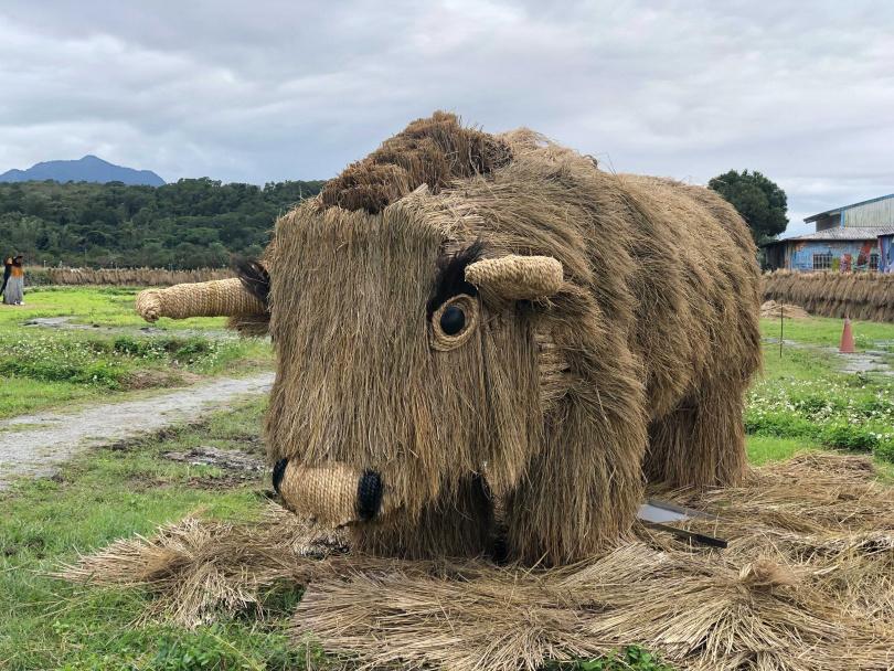 以稻草創作的巨型氂牛。