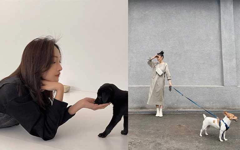 「不經意」是現在KOL拍照的終極指標,就連跟毛小孩也要這樣拍。(圖/hcnems IG,patricia_meimei IG)