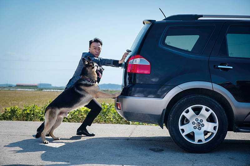李星民稱讚狼犬「阿里」演技超好,劇組準備的替身狗都用不上。(圖/CATCHPLAY提供)