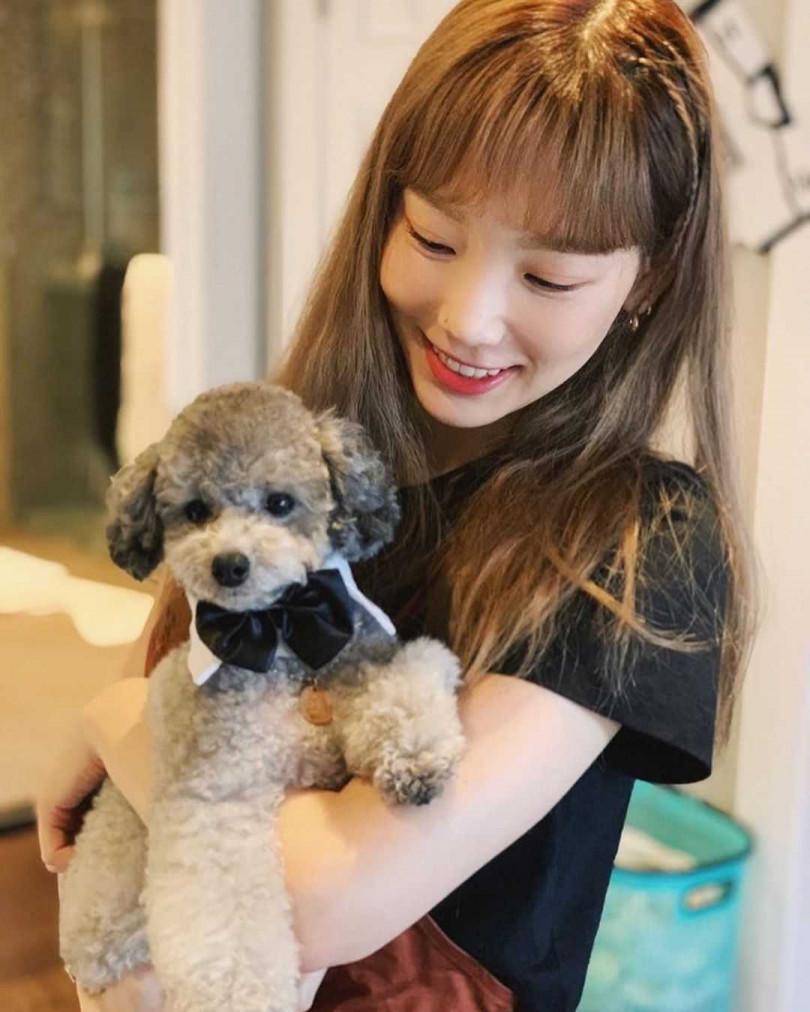 太妍去年和擁有30萬粉絲的愛犬Zero合拍實境秀。(圖/少女時代粉絲專頁)