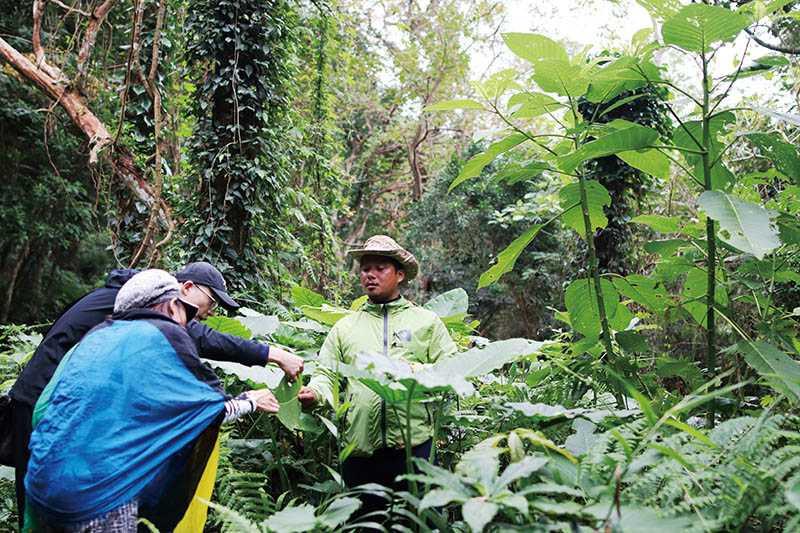 部落頭目為初造訪的團員細心解說附近的林相與生態。